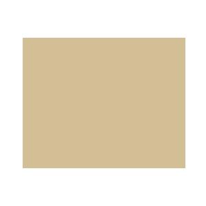 icone_Villa-Wollemborg-audio-1 Eventi aziendali Padova